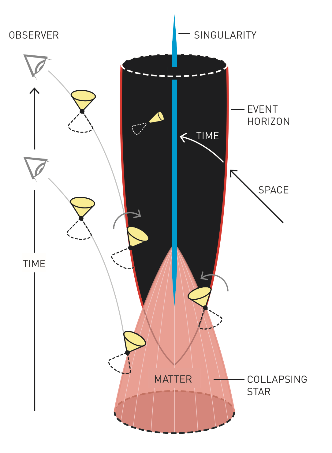 The Cross-Section of a Black Hole