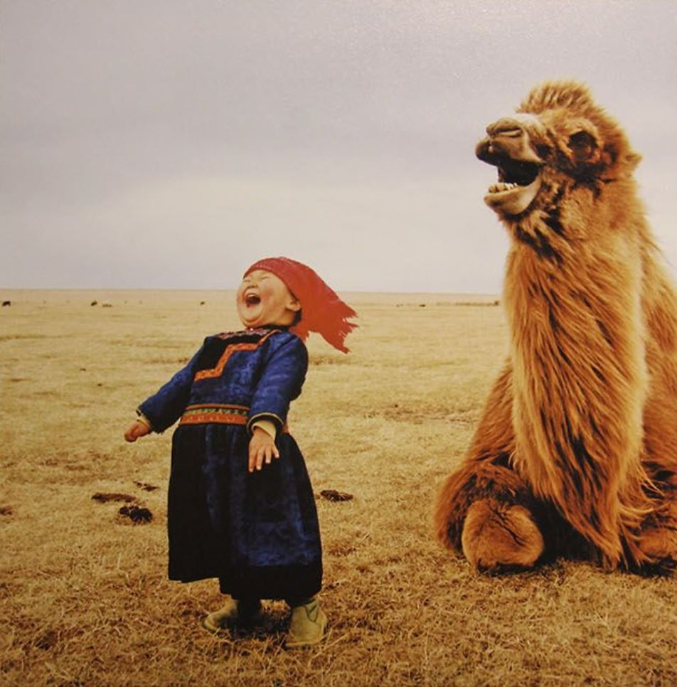Mongolian Girl Has a Laugh with her Camel